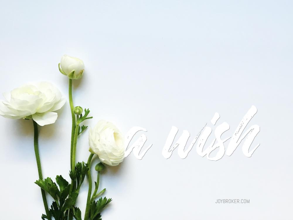 a wish_Joybroker-1k.png