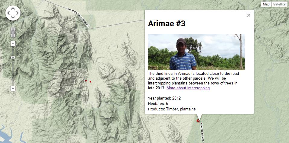 Image of Planting Empowerment's forest map