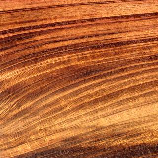 zorro grain.jpg