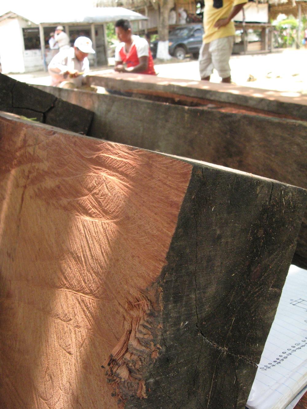 balsamo-timber.JPG