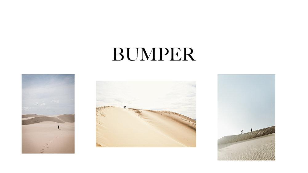 bumper1.jpg