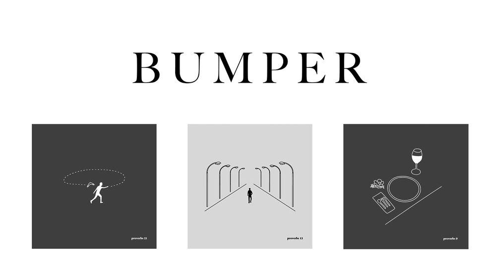 bumper22.jpg