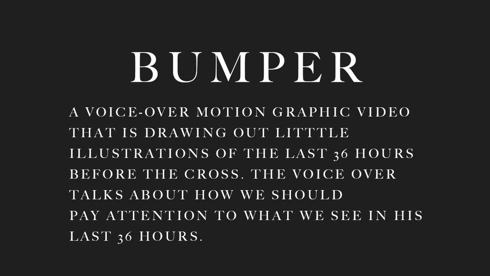 bumper222.jpg