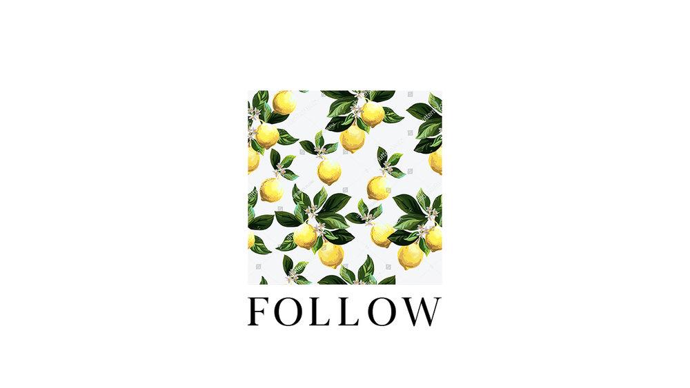 follow13.jpg