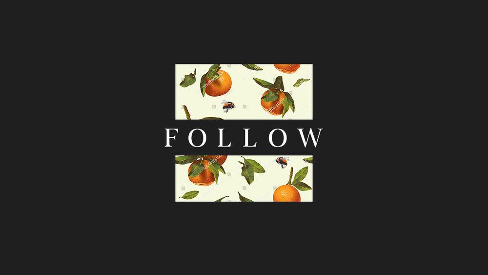 follow22.jpg
