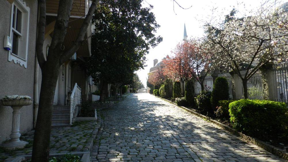 istanbul web gallery sm-19.jpg