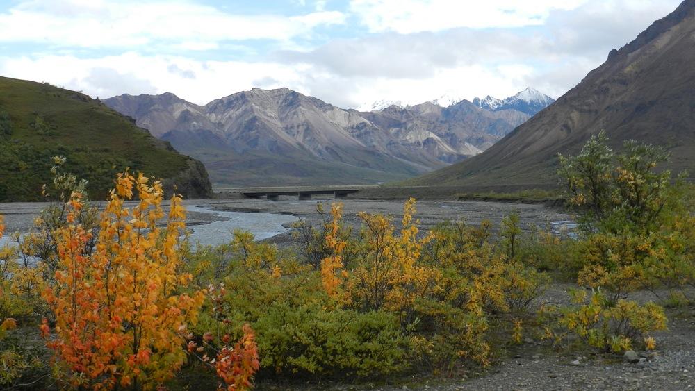 Alaska11.jpg