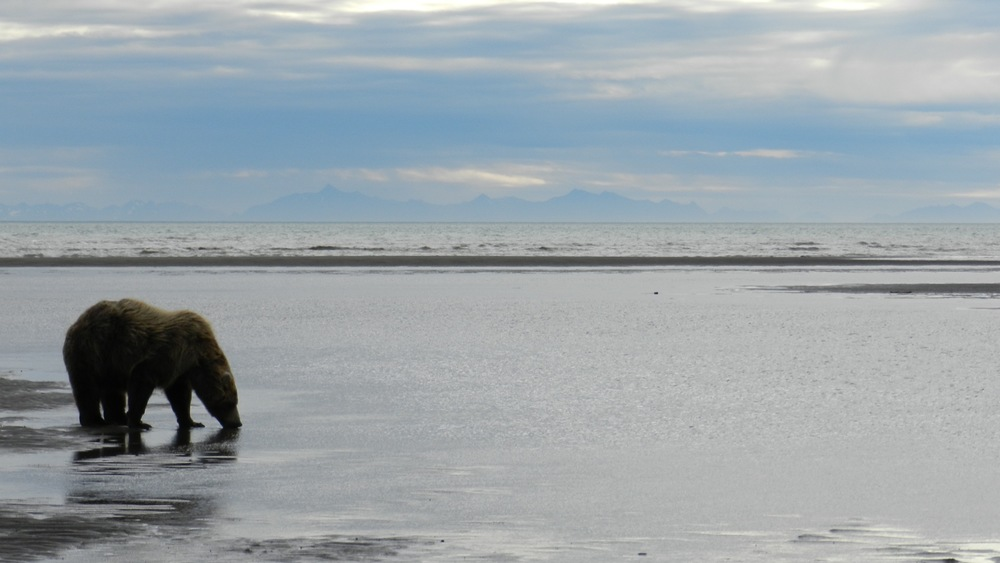 Alaska24.jpg