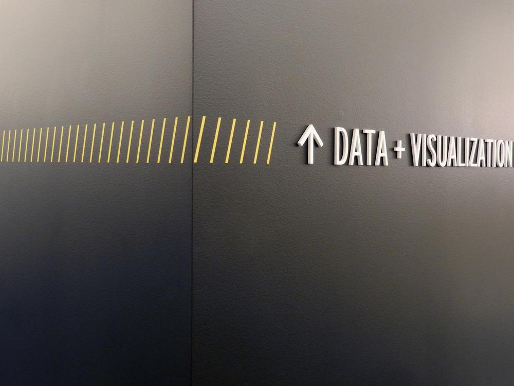Data Viz Detail.jpg