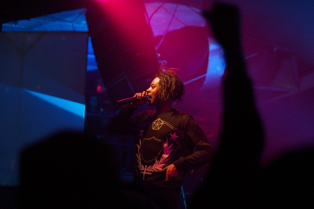 Danny Brown rockin' the mic (Photo Credit: Maddie Casey)