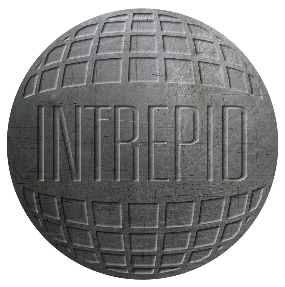 Intrepid is the Intelligence, Recovery, Protection and Infiltration Division of Interpol, and the literary brainchild of popular Australian author Chris Allen.