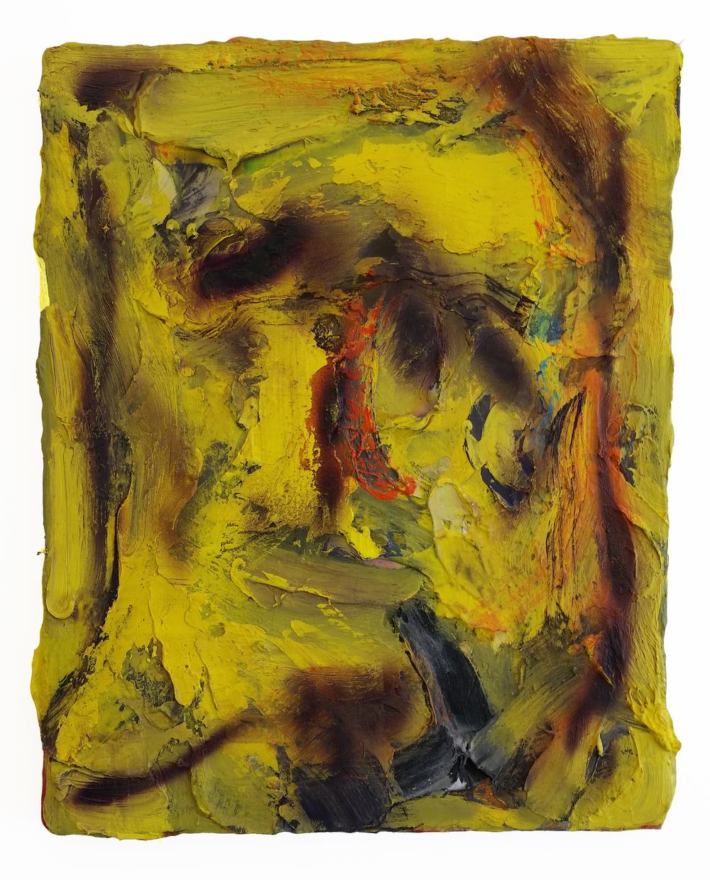HIPp2014 Yellow Prophet 20 x 16.jpg