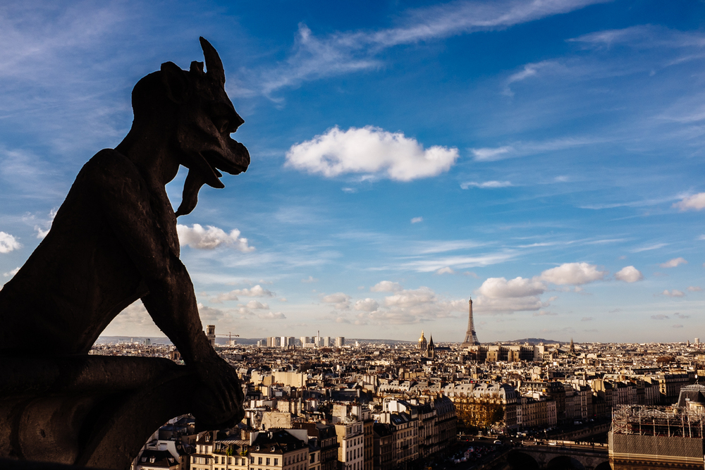 View from the towers at Notre Dame Cathedral