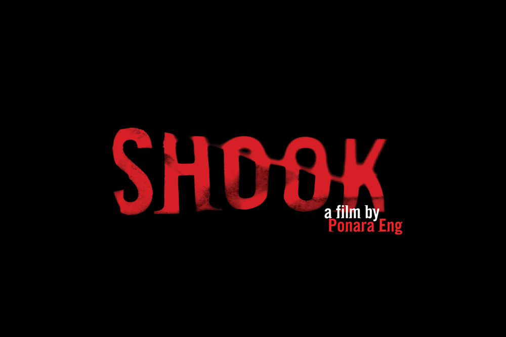 shook-elements_001a.jpg