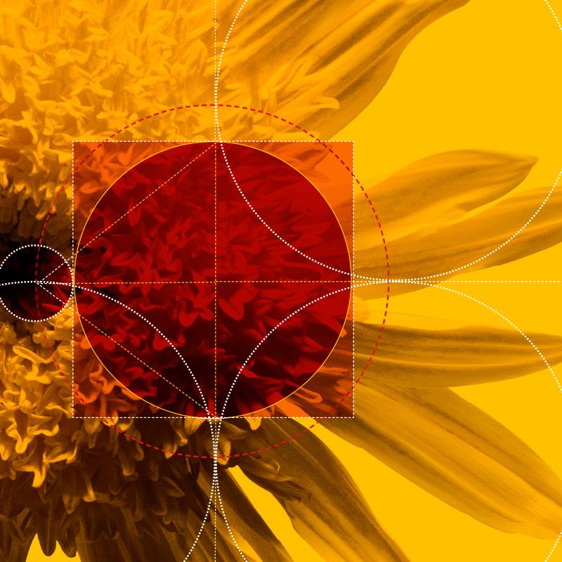 orsa-elements_009.jpg
