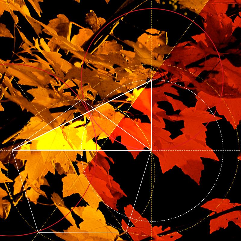 orsa-elements_011.jpg