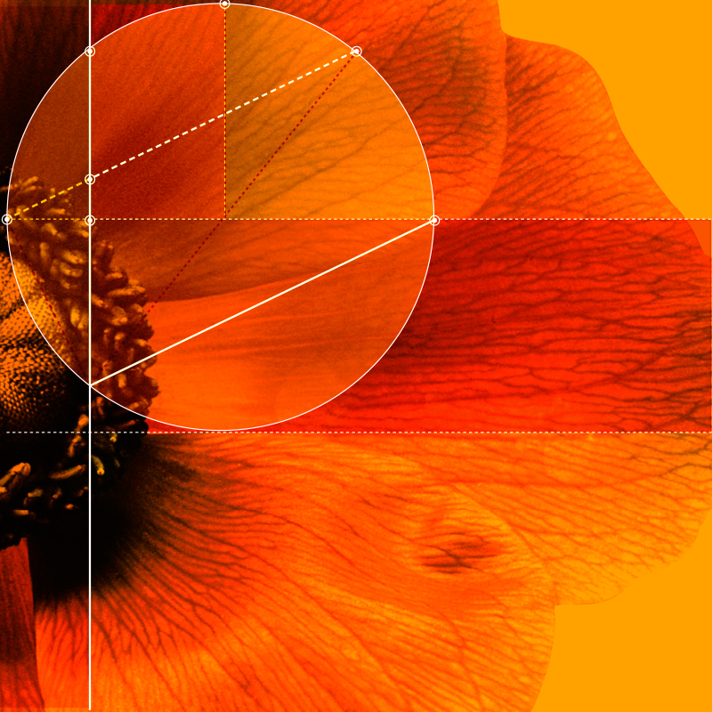 orsa-elements_015.jpg