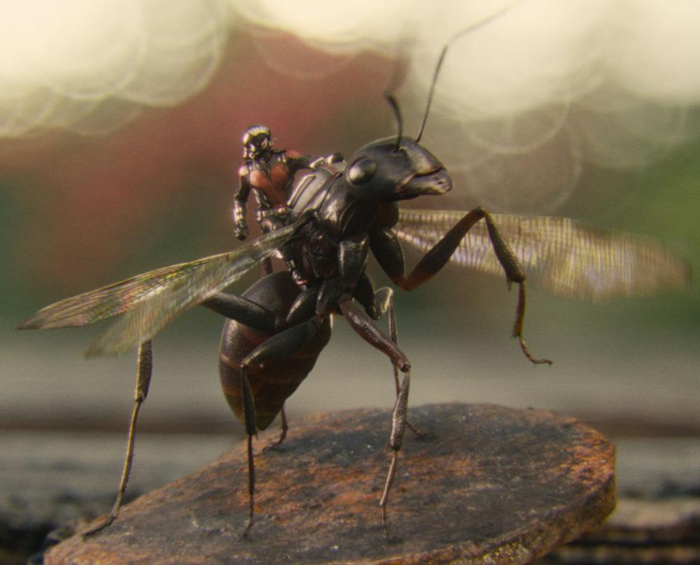 Ant-Man con la formica Antony