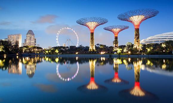 super-trees-singapore.jpg