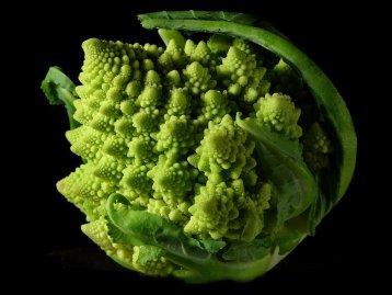 Fractal_Broccoli.jpg