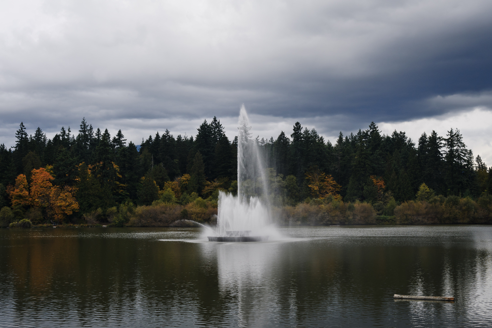 Lost Lagoon, October 21st, 2012.