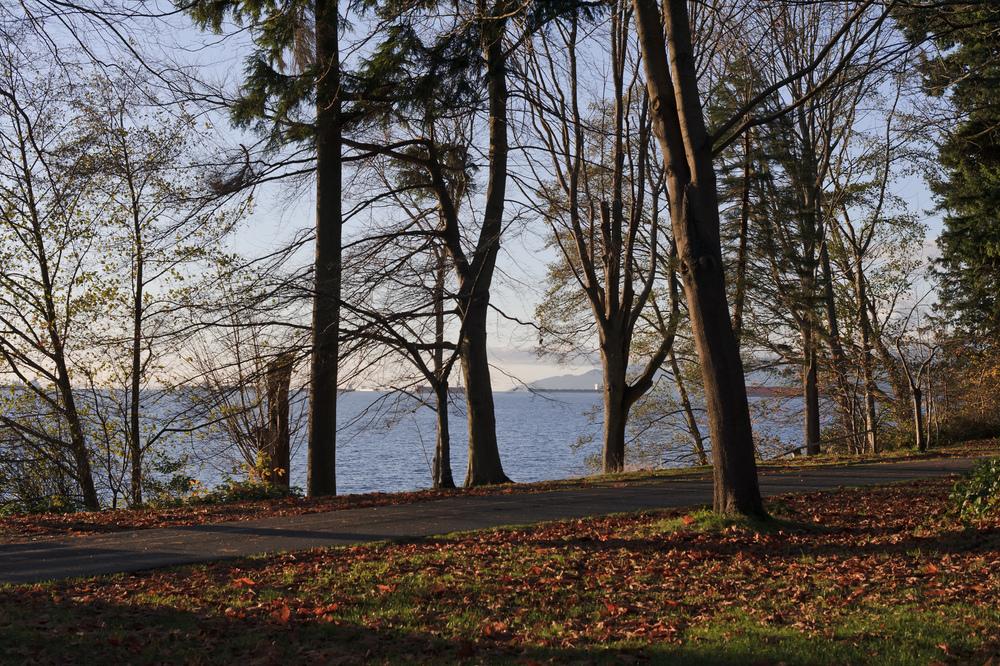 2012_11_24_Stanley_Park_viewpoint_02.jpg