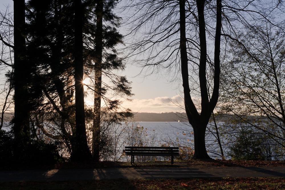 2012_11_24_Stanley_Park_Viewpoint_01.jpg