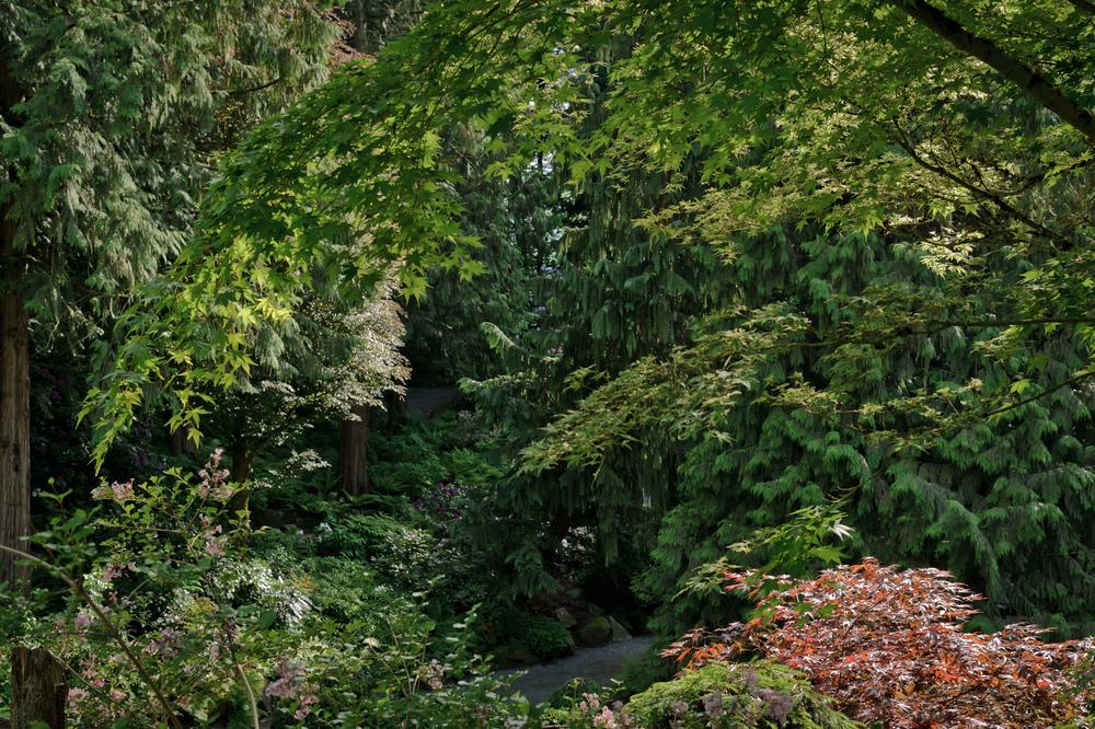 2013_05_20_Minter_Gardens_10.jpg