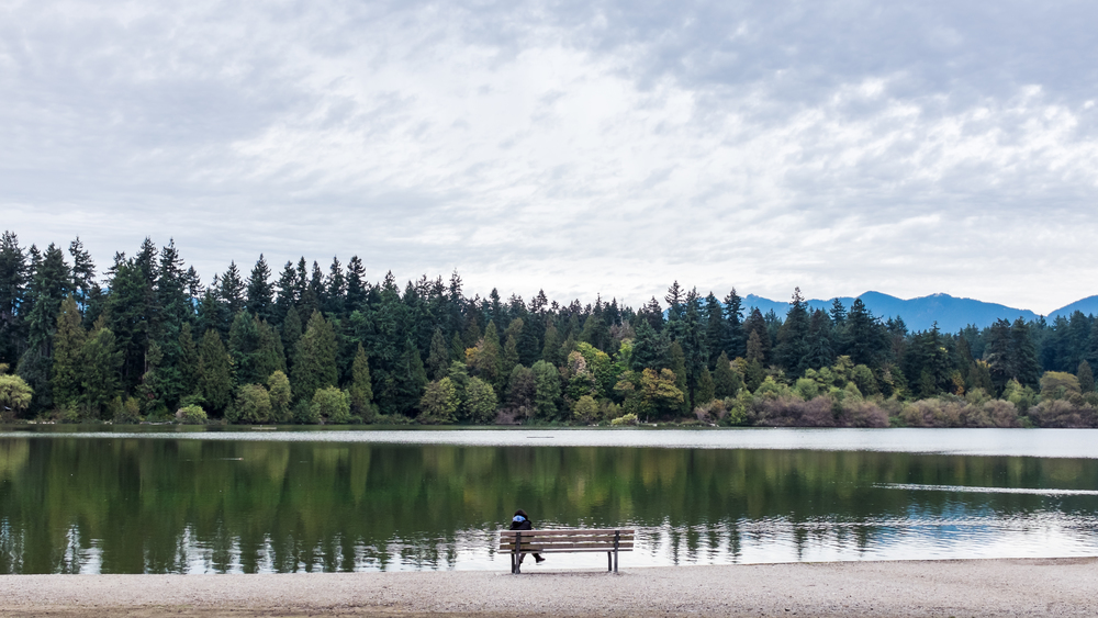 Lost Lagoon in Stanley Park, October 3, 2014