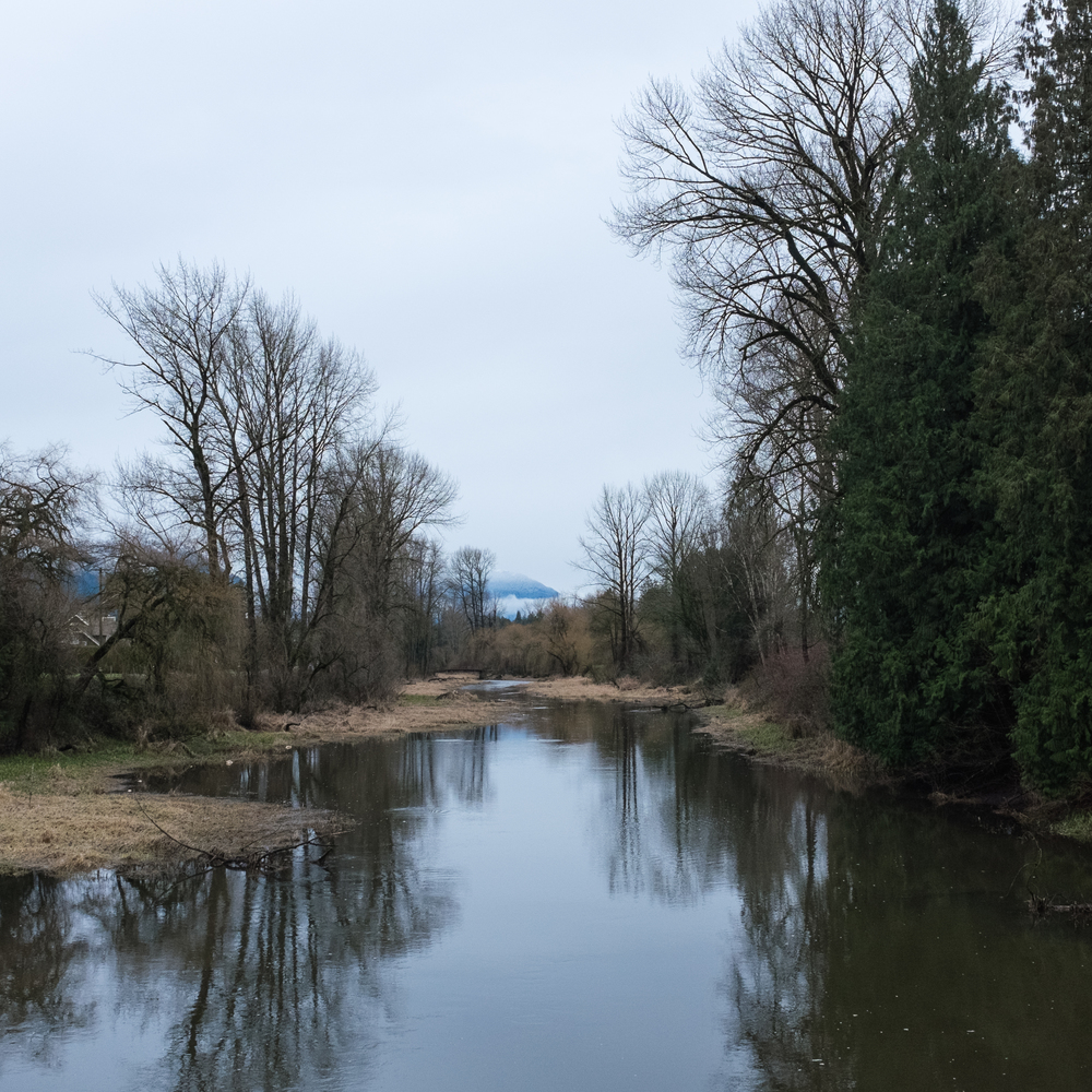 Hope River, the view to the east, December 28, 2015