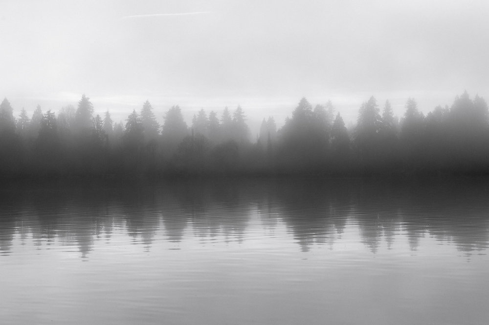 20180114-untitled shoot-4097.jpg