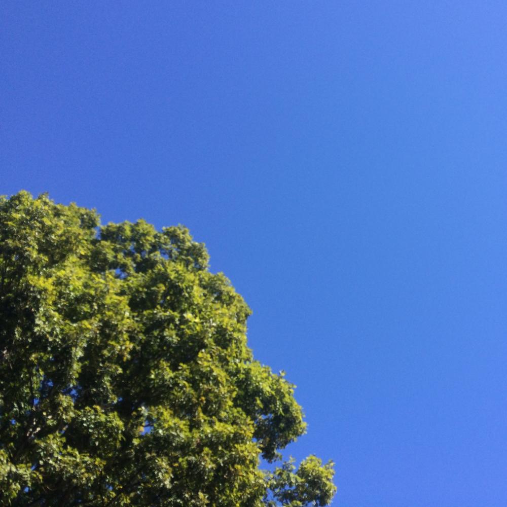 The magic of a brilliant blue sky