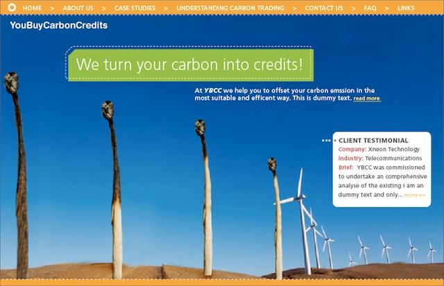 website concept for carbon trading company.jpg