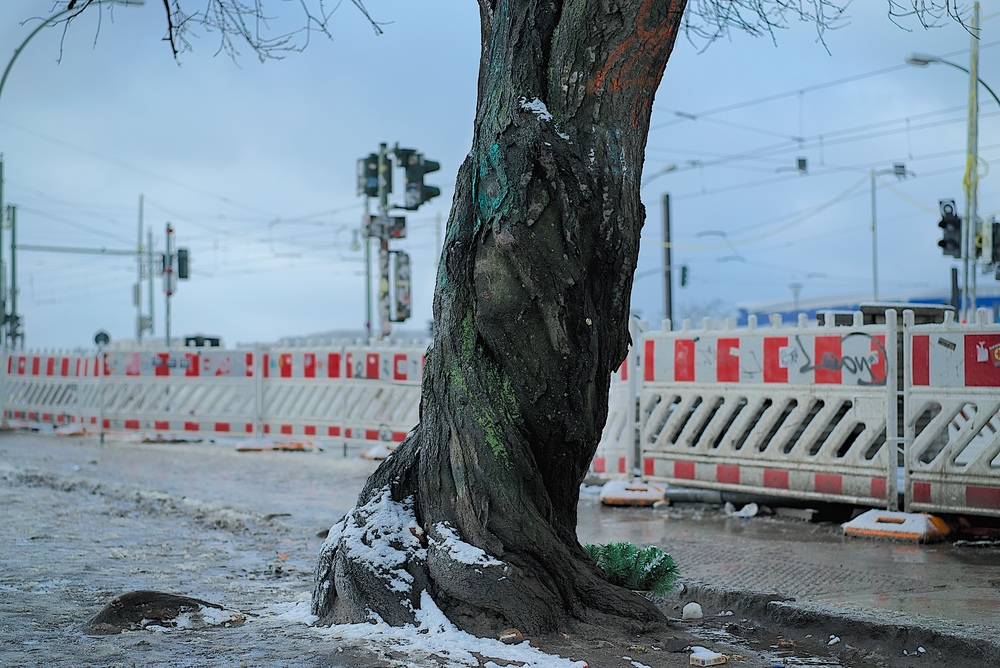 Nicolas_Gruszka_Berlin_Snow 11.jpg