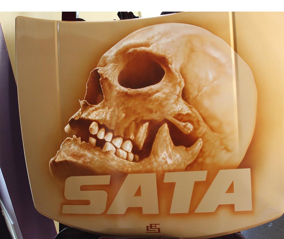 Skull-Sata.jpg