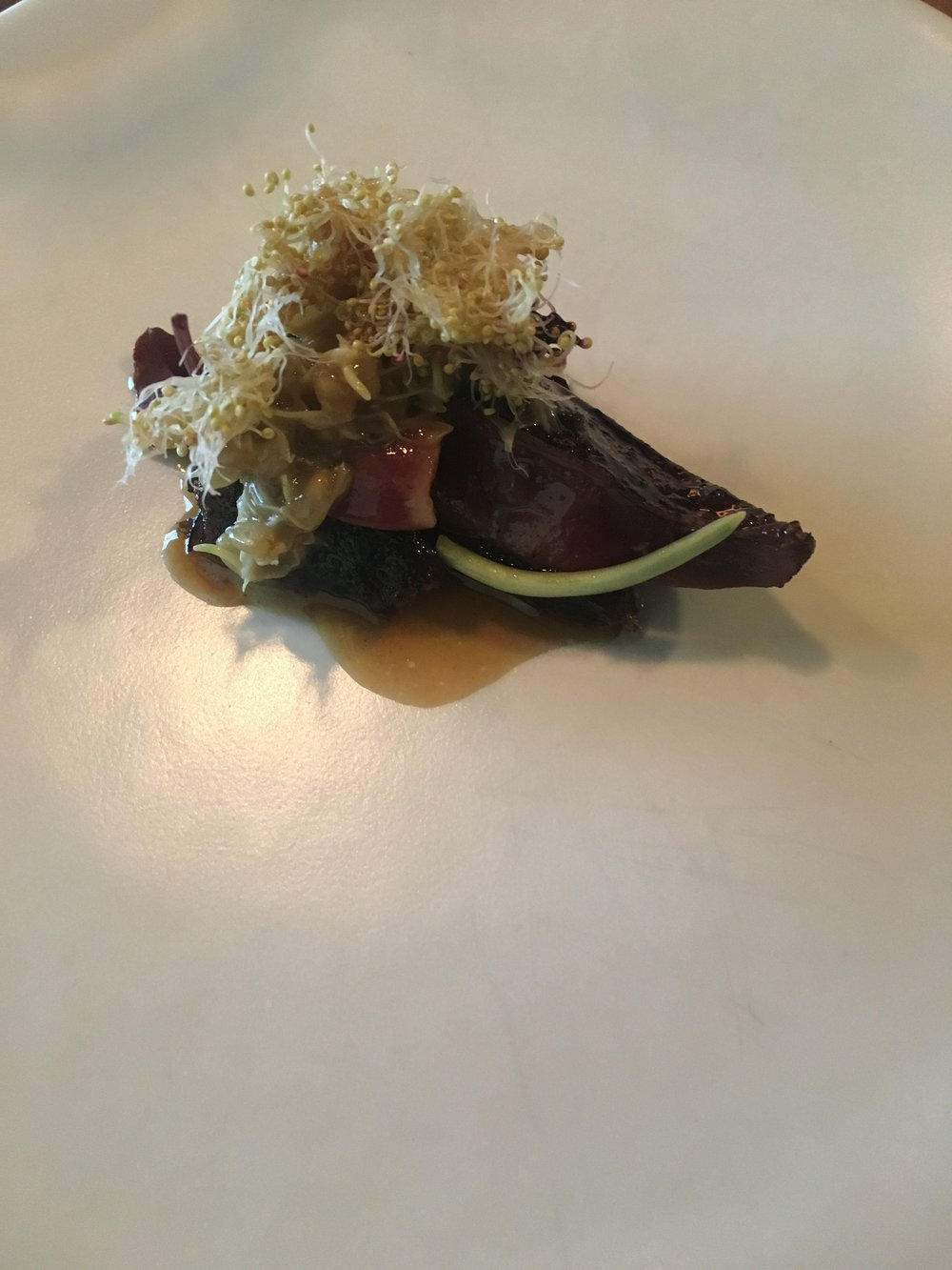 Roast squab, black walnut, sprouted grains, and black currant