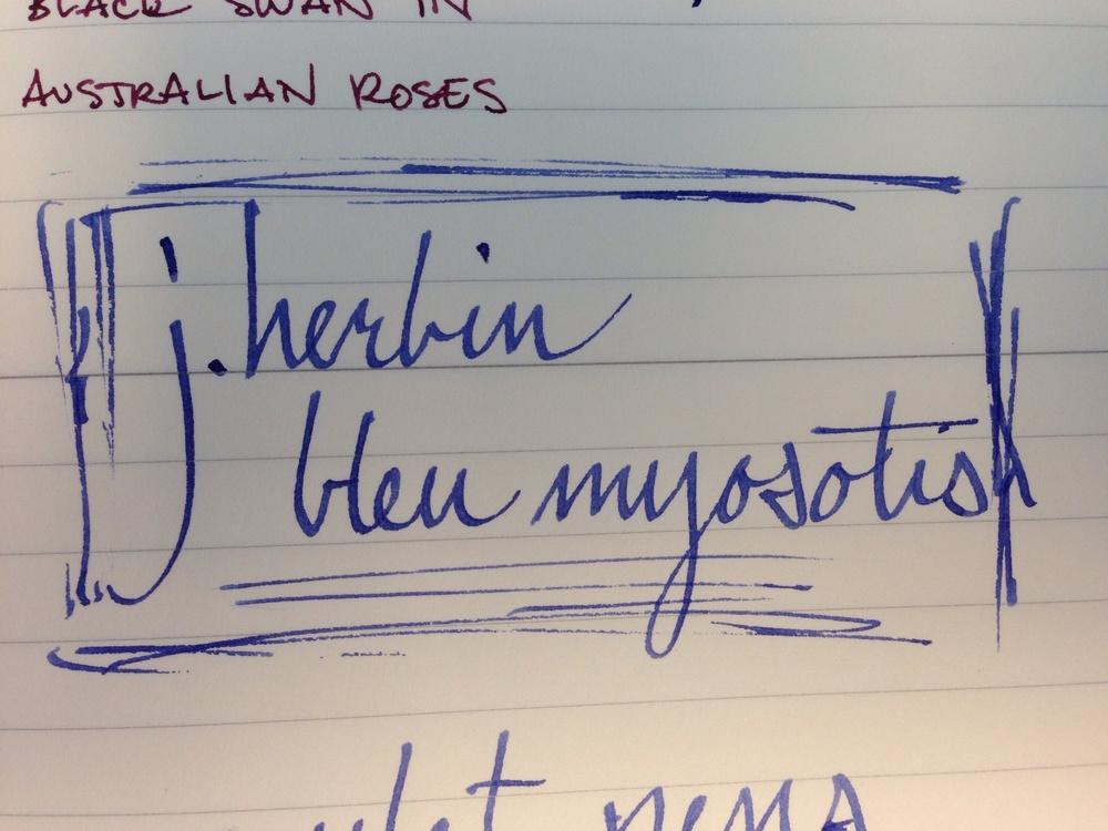 J. Herbin Bleu Myosotis on Midori lined notebook