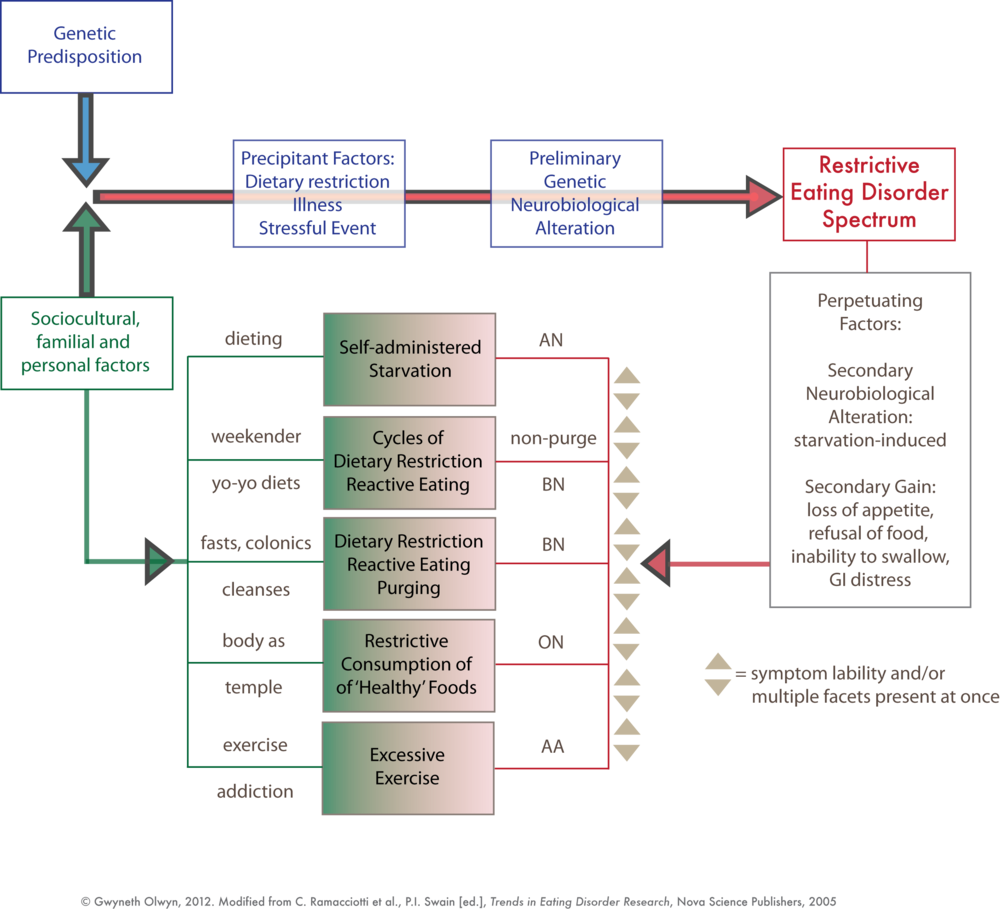 Реферат: Mendelian Genetics Essay Research Paper Gregor Mendel