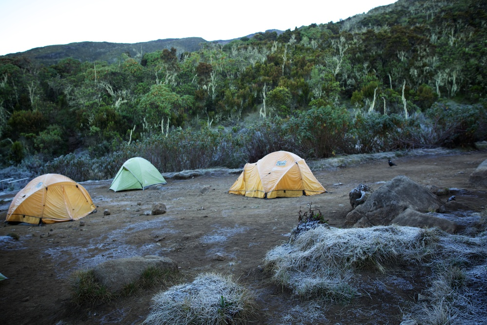 Machame Hut Camp, Kilimanjaro (TZ), Sep 2012
