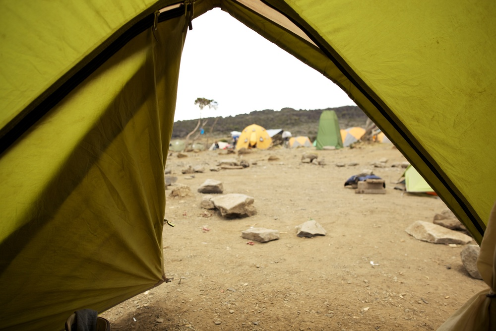 Shira Camp, 3940 asml, Kilimanjaro (TZ), Sep 2012