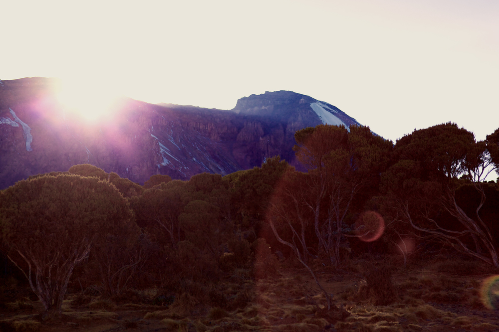 Sunrise, Kilimanjaro (TZ), Sep 2012