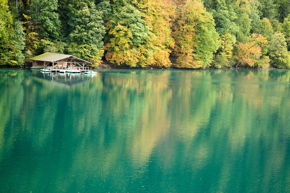 Fall in Alpsee Lake