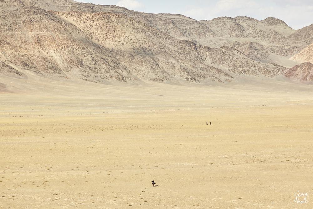 KAZAKH EAGLE HUNTER RIDING, STEPPES NEAR ALTAI MOUNTAIN, MONGOLIA