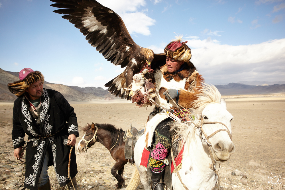 KAZAKH EAGLE HUNTERS AND THEIR RABBIT CATCH, ALTAI MOUNTAIN, MONGOLIA