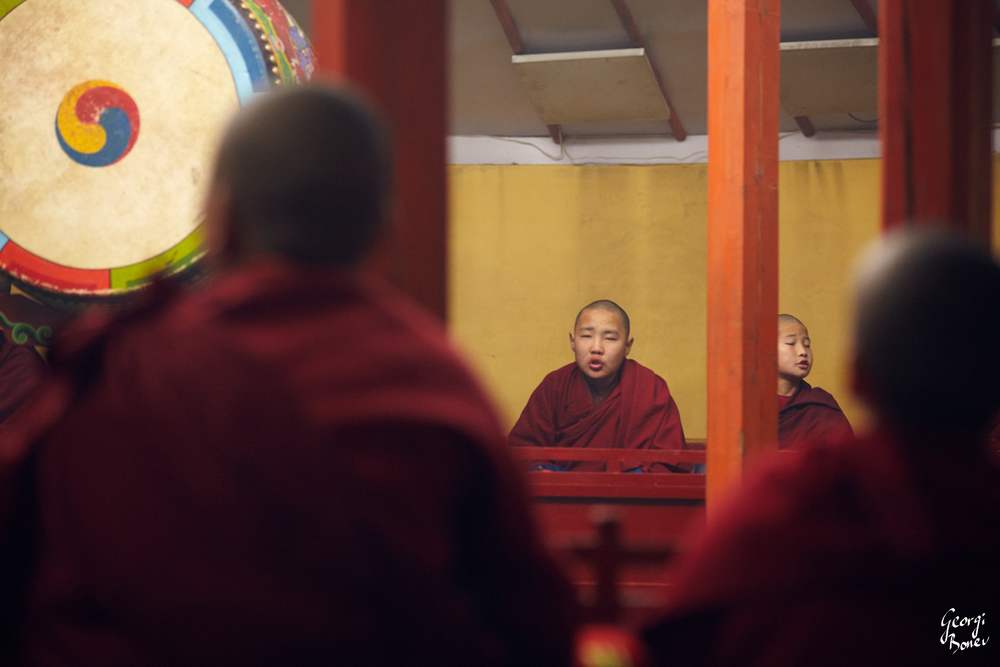 MONKS AT PRAYER IN AMARBAYASGALANT MONASTERY, MONGOLIA