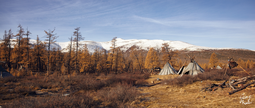 TSAATAN CAMP  IN SIBERIA, MONGOLIA