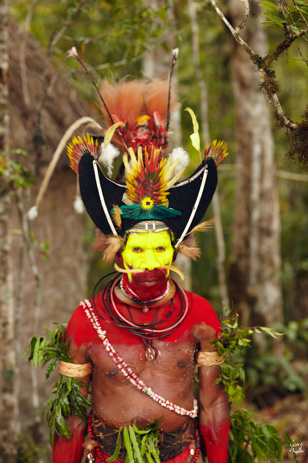 STAGE 3 WIG OF MONAGO, PAPUA NEW GUINEA