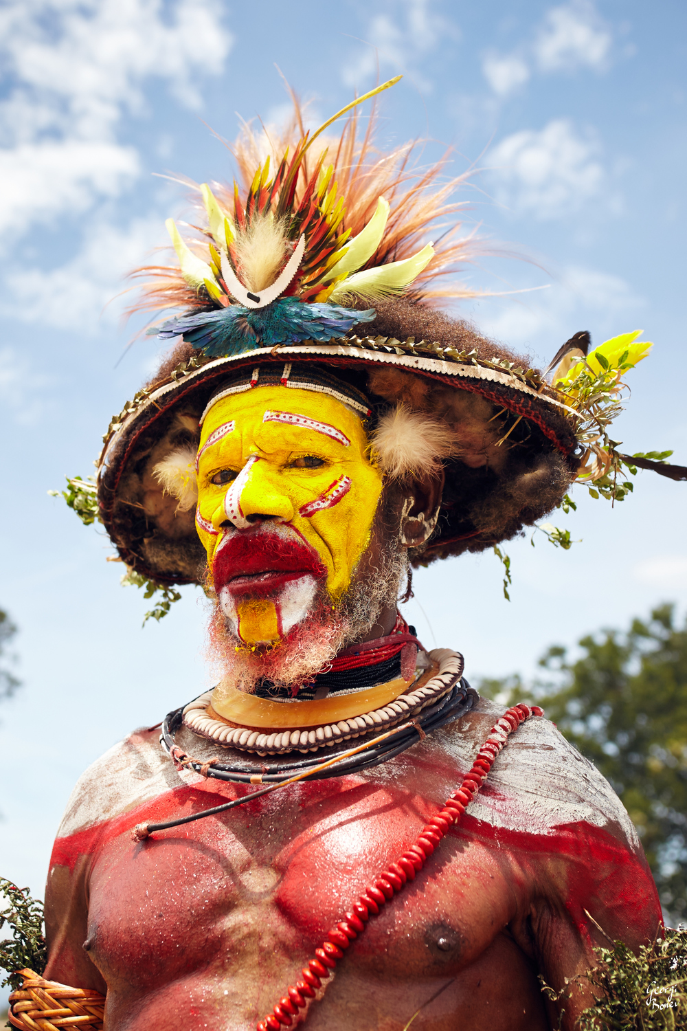 HULI WIGMEN WARRIOR, PAPUA NEW GUINEA