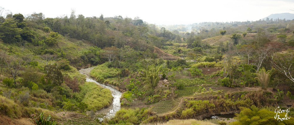 ASARO RIVER AND NEARBY FOREST IN PAPUA NEW GUINEA
