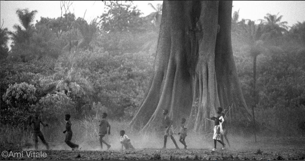 Boys play soccer under Bontang tree, Guinea Bissau